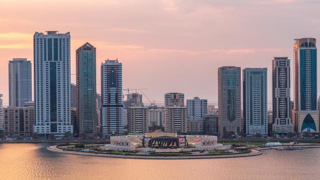 استعانة الإمارات بخبراء